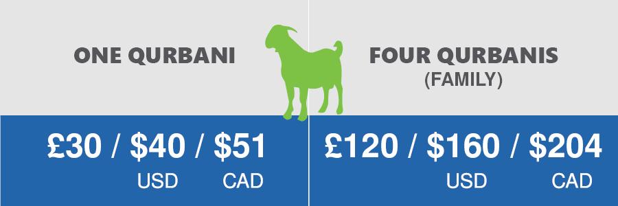 Qurbani Prices